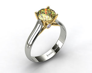 18k White Gold Surprise Diamond Solitaire Engagement Ring (Yellow Gold Basket)